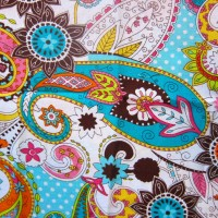 Bright Colored Paisley Wristlet